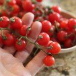 Bimi en Salsa Pesto de Eneldo y Hierbabuena